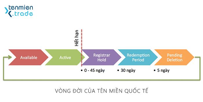 vong_doi_ten_mien_quoc_te.